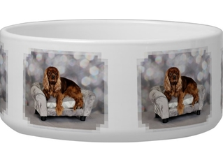 Cavalier-king-charles-spaniel-keesje-dog-water-bowls-pet-bowl
